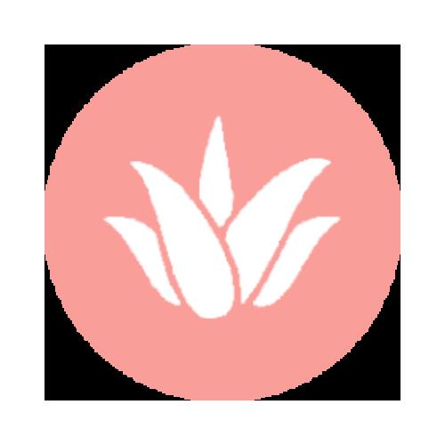 Kosmetyki z aloesem (Aloe Vera) | Sklep MISUN